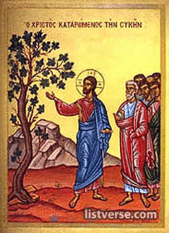 Jesus y la higuera