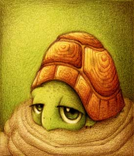 tortuga-by-faboarts