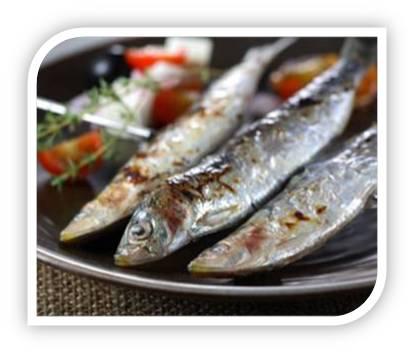 sardinas 1