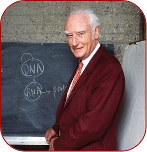Francis Crick, codescubridos del ADN